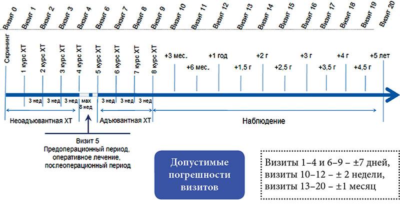 Схема лечения от рака