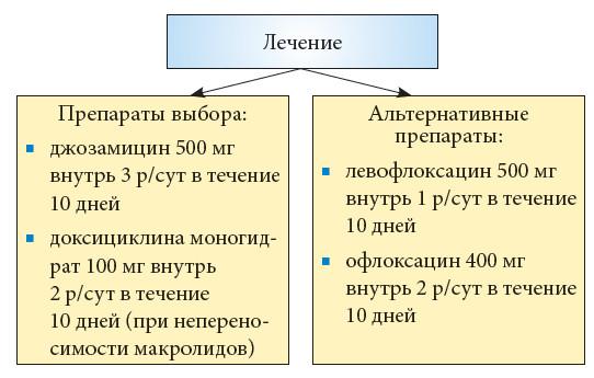 микоплазма у кошек курс лечения офлоксацитом 000 рублей кальсоны