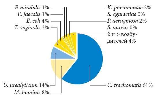 Бесплодие proteus mirabilis может ли разрушать сперматозоид
