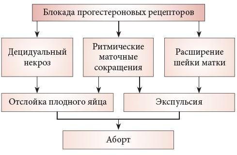Схема приема миропристона и миролюта