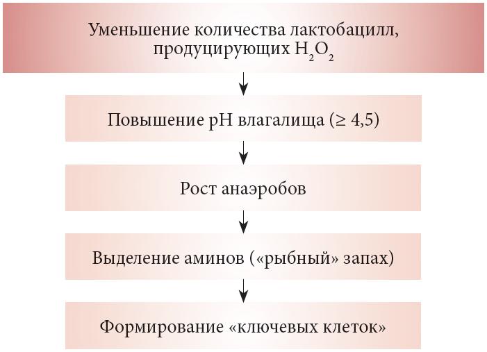 Рис. 2.