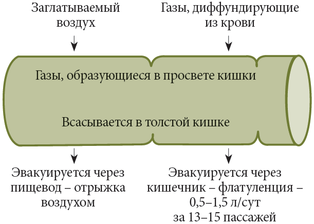 Профессор Ю.П. Успенский