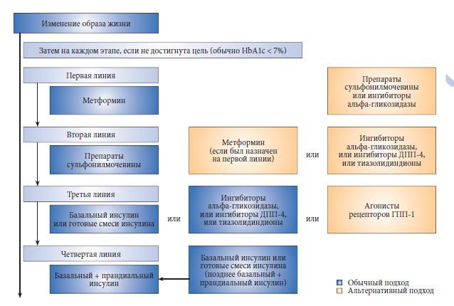 Эрекция у больного сахарным диабетом