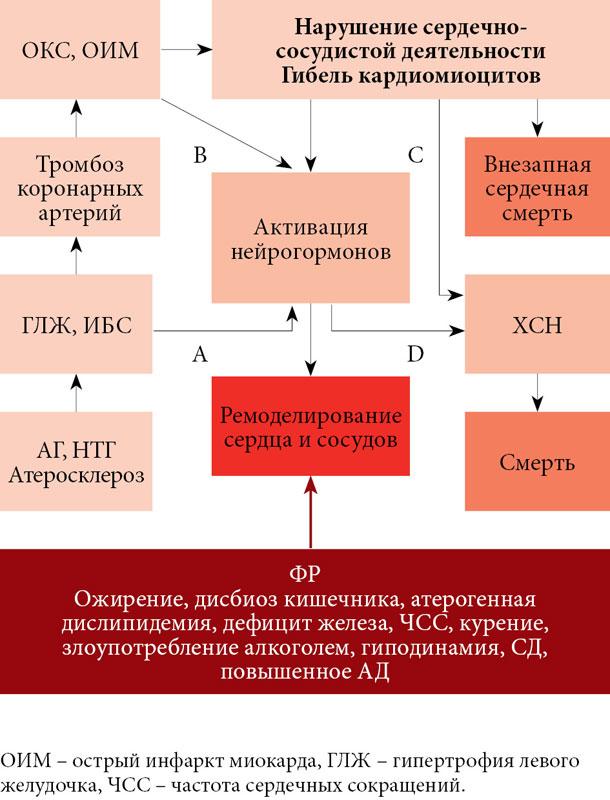Схемы лечения болезней сердца