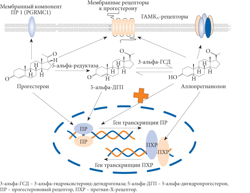 Виды фармакотерапии