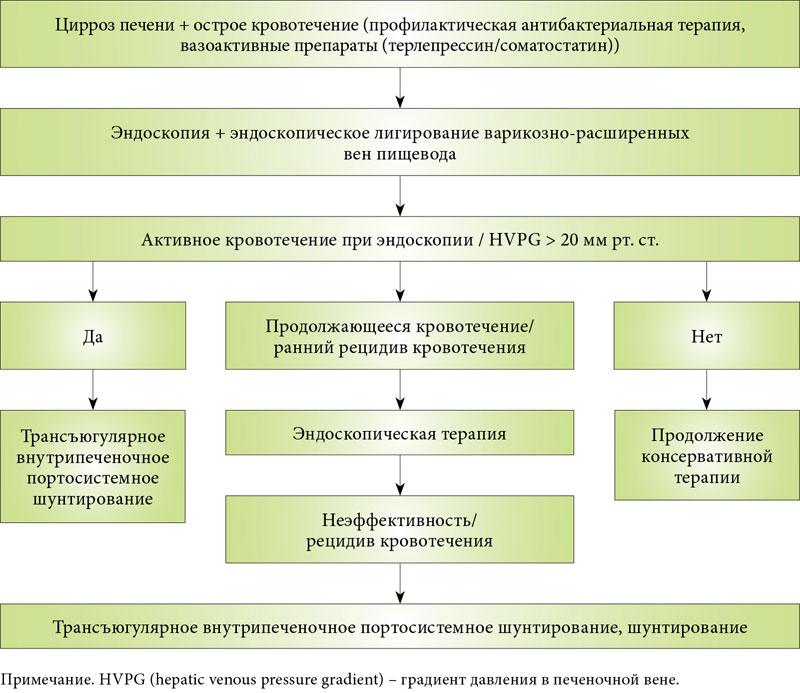 Современная классификация хронических гепатитов