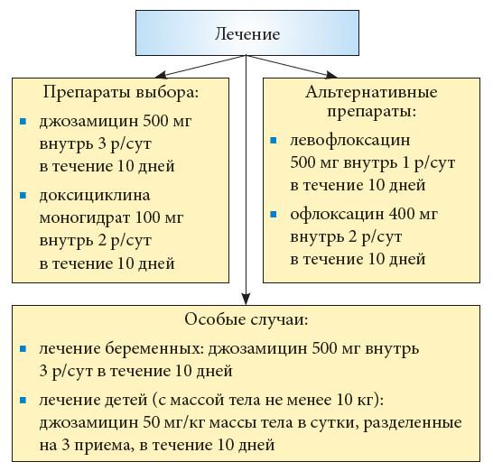 Профессор Т.С. Перепанова