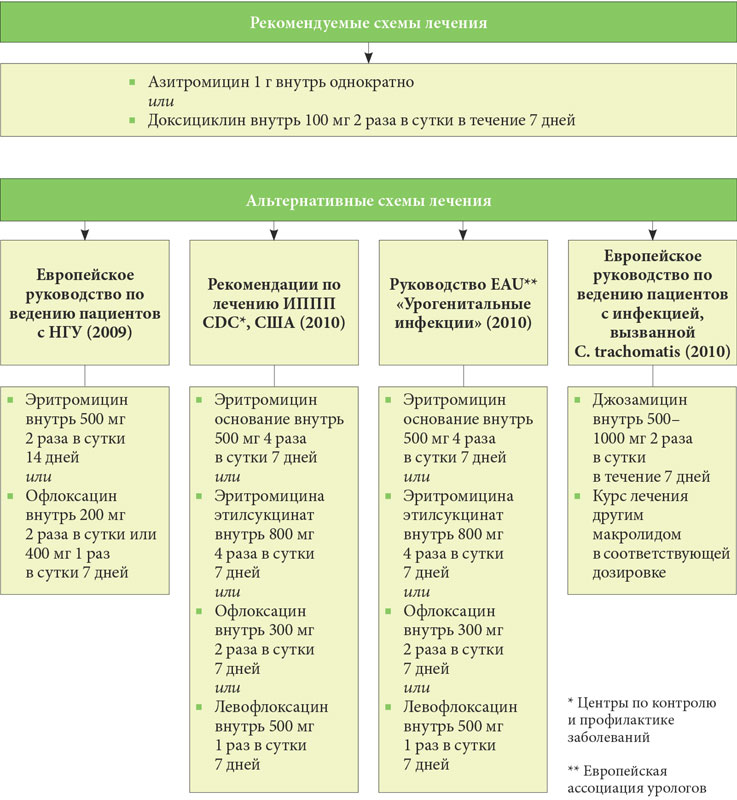 Микоплазма у кошек курс лечения офлоксацитом