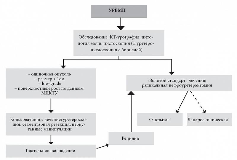 Нефроуретерэктомия фото